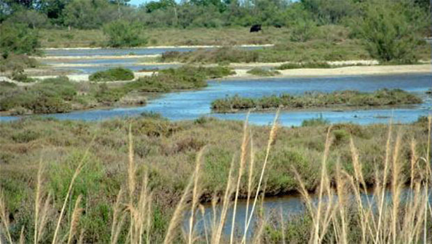 parques naturales de francia - Reservas de la biosfera